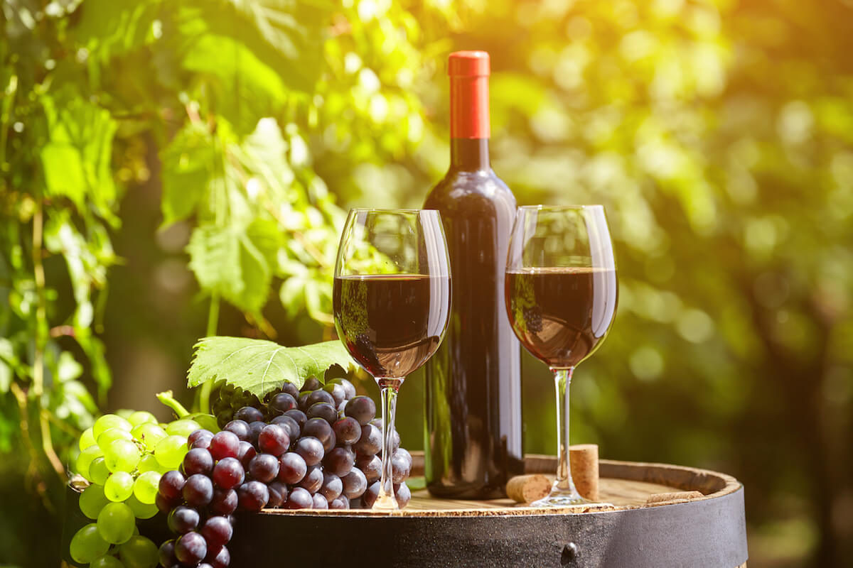 Wine Tasting Tour and Lunch